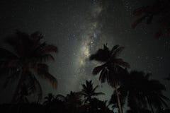 palmy i milkyway nad Siargao, Filipiny obraz royalty free