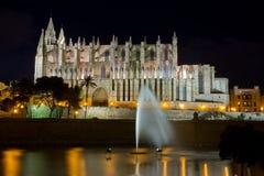 Palmy katedra Zdjęcie Royalty Free