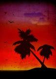palmy krajobrazowi Fotografia Royalty Free