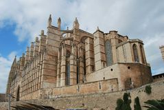 Palmy Mallorca katedra Fotografia Stock