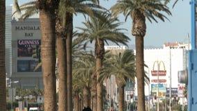 Palmy na Las Vegas bulwarze zdjęcie wideo