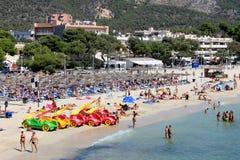 Palmy nowa plaży scena Zdjęcia Stock
