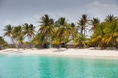 Palmy Plaża Fotografia Stock