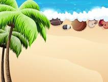 palmy plażowi tropikalne ilustracji