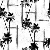 Palmy plażowy tło Obraz Stock