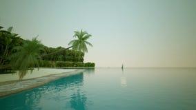 Palmy plaża ocean w zwrotnikach Obraz Royalty Free