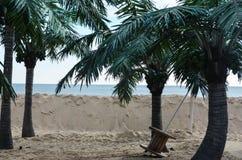 palmy plażowi tropikalne Obrazy Royalty Free
