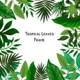 Palmy poślubia wydarzenia zaproszenia karcianego projekt z Tropikalnymi kwiatami, zapraszają dziękują was, rsvp nowożytny karcian royalty ilustracja