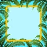 Palmy rama i liście Obraz Royalty Free