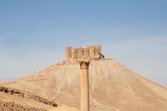 palmyra Συρία Στοκ Φωτογραφία