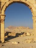 palmyra Συρία Στοκ Εικόνες