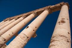 Palmyra, Συρία Στοκ Φωτογραφία