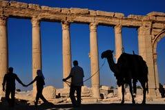 Palmyra, Συρία Στοκ εικόνα με δικαίωμα ελεύθερης χρήσης
