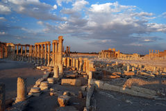Palmyra Royalty Free Stock Photography