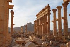 Palmyra Foto de Stock Royalty Free