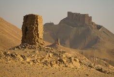 Palmyra Stock Fotografie