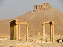 Palmyra Royalty Free Stock Photo