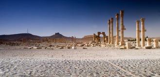 Palmyra Royalty Free Stock Photo
