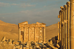 Palmyra. Is ancient city ruins in oasis of Syria desert Royalty Free Stock Photos
