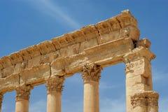 Palmyra antiguo de las columnas, Siria Imagenes de archivo