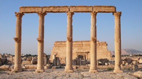 Palmyra columns and Agora. Syria Stock Photography