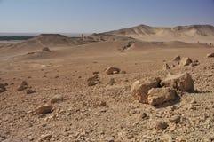 Palmyra desert Royalty Free Stock Images