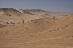 Palmyra desert Stock Photography