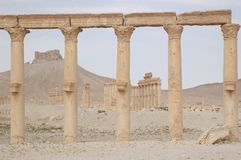 Palmyra - Qalat Ibn Maan Royalty Free Stock Images