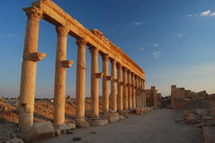 Palmyra-ruins Royalty Free Stock Photo