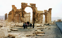 Palmyra Stock Photography