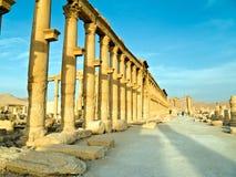 Palmyra Syrië Royalty-vrije Stock Afbeelding