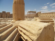 Palmyra, Syrië Stock Foto's