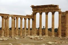 Palmyra, Syrië Royalty-vrije Stock Foto's