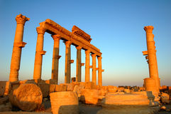 Palmyra,Syria Royalty Free Stock Images