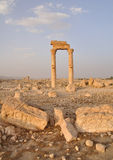 Palmyra, Syria Royalty Free Stock Image
