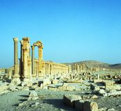 Palmyra in Syria Royalty Free Stock Photos