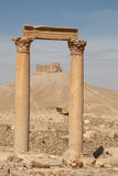 Palmyra_Syria Stockfotos