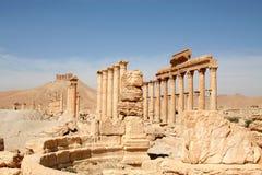 Palmyra_Syria Fotografie Stock Libere da Diritti