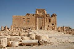 Palmyra_Syria Fotografia Stock Libera da Diritti