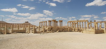 Palmyra, Syria. Ancient ruins in desert, Syria Royalty Free Stock Image