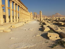 Palmyra, Syria. Ancient ruins in desert, Syria Royalty Free Stock Photography