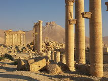 Palmyra, Syria. Ancient ruins in desert, Syria Stock Photography
