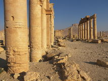Palmyra, Syria. Ancient ruins in desert, Syria Stock Images