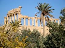 Palmyra, Syria Royalty Free Stock Photos