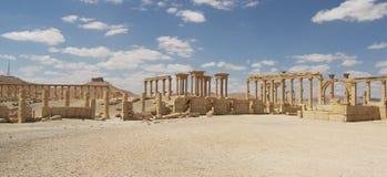 Palmyra, Syrie Image libre de droits