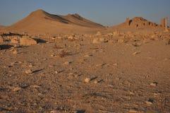 Palmyra und Wüste Stockfotografie