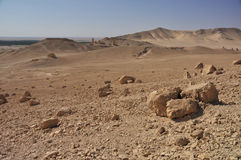 Palmyrawüste Lizenzfreie Stockbilder