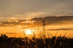 palo ad alta tensione sul tramonto Fotografia Stock