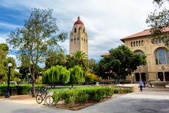 Hoover tower and green trees in Stanford University campus stock photography