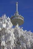 Palo de radio en invierno Imagen de archivo